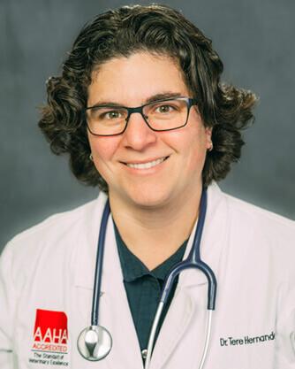 Dr. Tere Hernandez